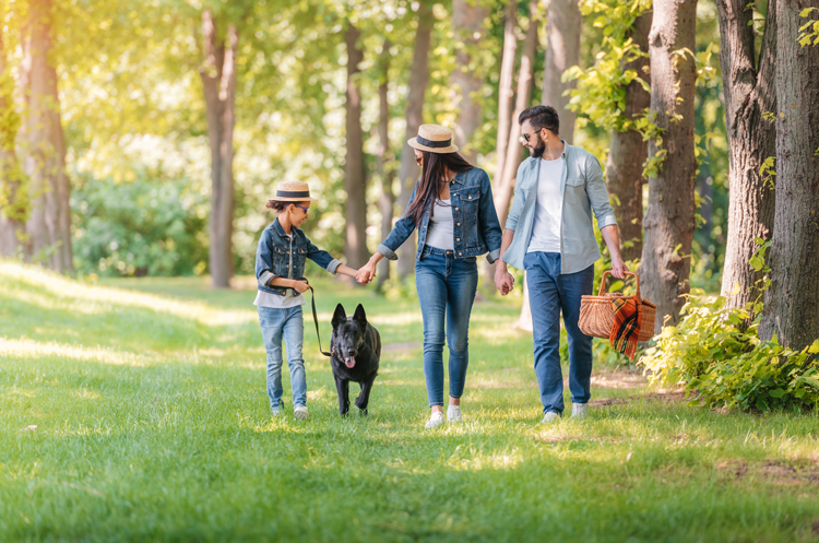 A girl, a woman, and a man with a dog and a picnic basket