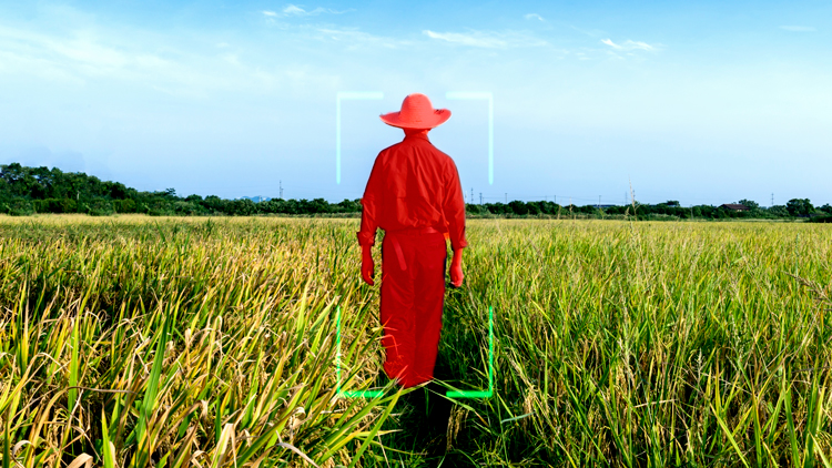 Man in field with bounding box