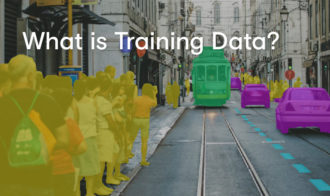 What is Training Data?